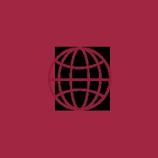 icon_media_globe